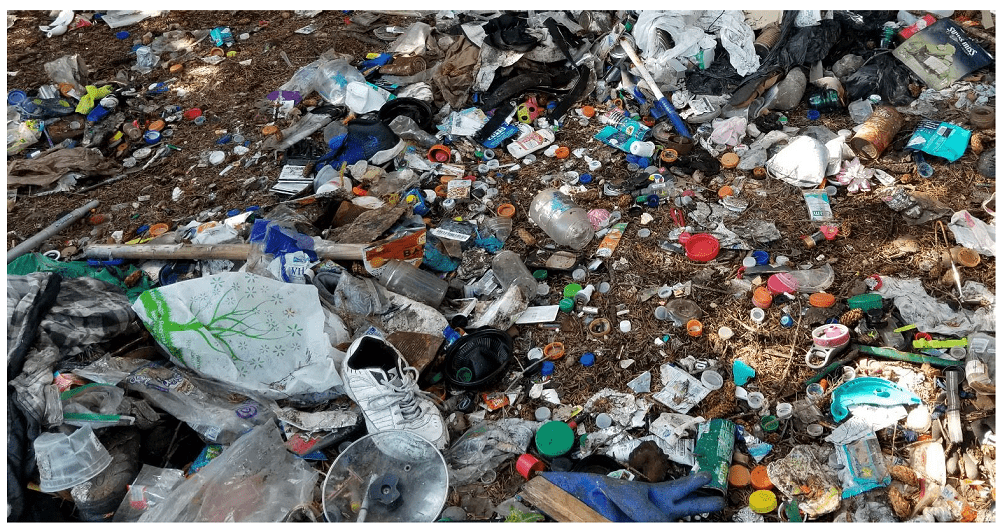 Breaking Free From Plastics Audit Report of the 2019 International Coastal Cleanup Conducted at Crescent City, California, United States, on 21 September 2019 by Ellery West, CEO, Organic Essence